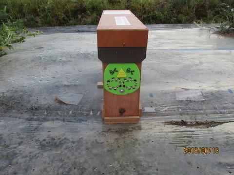 IMG_9149-thumbnail2-thumbnail2.jpg